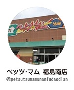 petsmumminami_instagram
