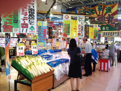 mfukushima150919b