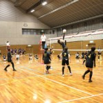 volleyball-28_c